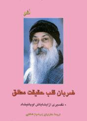 خرید کتاب ضربان قلب حقیقت مطلق